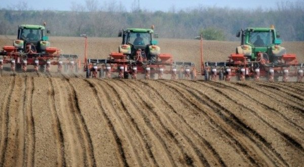 The Pros and Cons of Intensive Farming