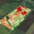 drone-created-fertilizer-prescription-map